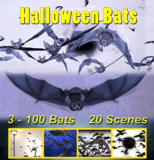 HALLOWEEN BATS - VER #2 - DIGITAL DOWNLOAD OR USB